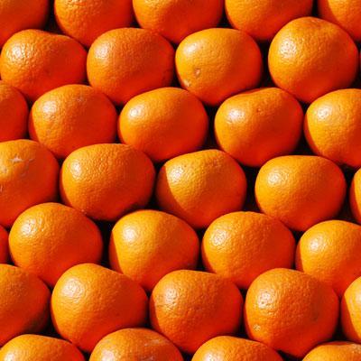 orange logos quiz